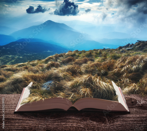 Foto op Aluminium Diepbruine The wind playing with high grass on the pages of book