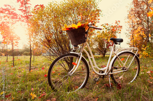 Foto op Aluminium Fiets White retro style bicycle with basket with orange, yellow and green leaves, parked in the colorful fall park among trees, horizontal composition