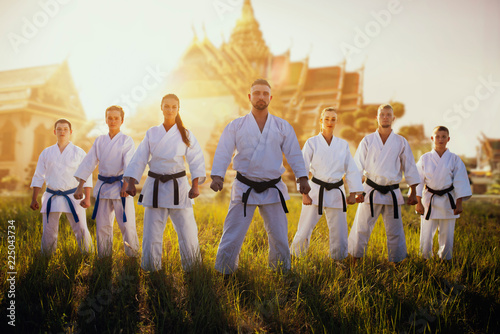 Garden Poster Martial arts Male and female karate group against temple
