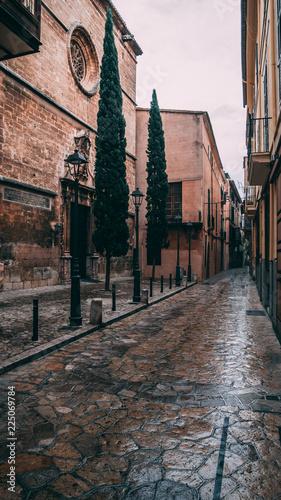 Poster Smal steegje The beauty of architecture in Palma de Mallorca, 2018, Spain
