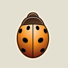 Orange Asian Ladybug Cartoon Icon Vector Illustration