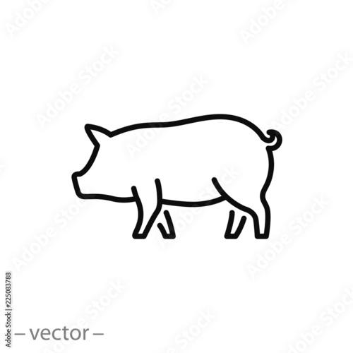 Obraz na plátne pig icon, piggy silhouette linear sign isolated on white background - editable v