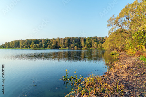 Foto op Aluminium Meer / Vijver The beautiful natural landscape of a fishing lake in sunset with reeds and trees