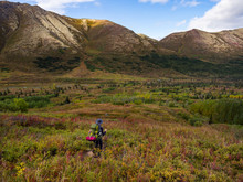 Backpacker In The Tundra, Mountains And Valley, Alaska In Autumn