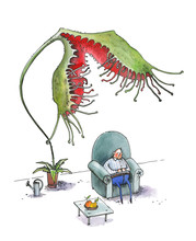 The Fat Man Sleeps In A Large Blue Armchair. A Flower Sundew Tries To Eat A Man. Humorous Illustration. Watercolor. Isolated On White Background