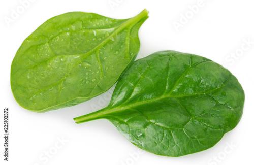 Fotobehang Aromatische Fresh spinach on white background