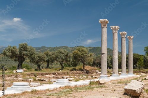 Foto op Aluminium Rudnes Ruins of the ancient town Tralles (Tralleis), Turkey