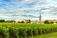 Vineyards Of Saint Emilion, Bordeaux Wineyards In France