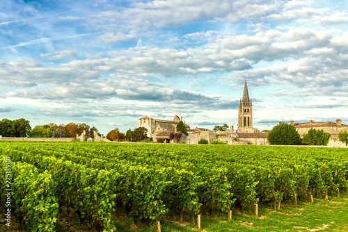 Stickers pour portes Lieu d Europe Vineyards of Saint Emilion, Bordeaux Wineyards in France