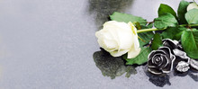 Grave With Rose, Allerheiligen...