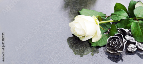 Leinwand Poster Grave with rose, Allerheiligen, Allerseelen, Grab, Rose, Panorama, Banner, heade