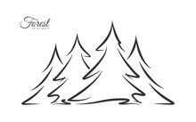 Vector Illustration: Hand Drawn Pine Forest. Sketch Line Disign.