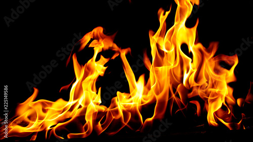 Fototapety, obrazy: Flame of fire on a black background