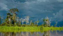 A Storm Is Coming. View From A Boat In The Amazonas River In Peru