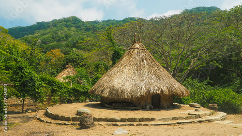 natural ancient reed houses of el pueblito Tableau sur Toile