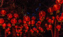 Chineese Lanterns At Gardens Of Light, Montreal, Quebec, Canada.