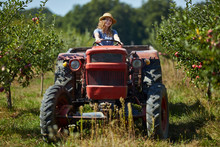 Young Farmer Woman Driving Her Old Tractor