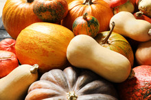 Many Different Pumpkins As Bac...