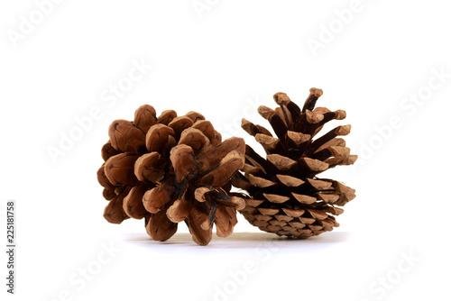 Fotografia, Obraz  two pine cones on white