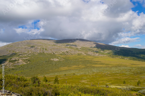 Landscape of green valley flooded with light and lush green grass and trees, mountains, covered with stone, a fresh summer day under a blue sky with white clouds and sun rays in Altai mountains