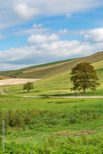 A view of a South Downs landscape in Sussex, during Autumn