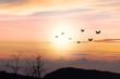 Birds flying..Silhouette flock of birds flying over mountain coastline with twilight horizon sea sky at sunset.