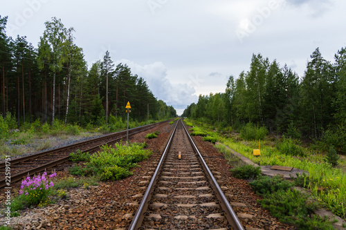Staande foto Spoorlijn Empty railroad tracks running in the middle of a forest outside Hanko Finland