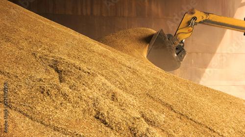Fotografía  Loader bucket loading grain close up