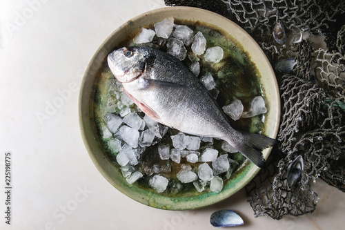 Raw uncooked gutted sea bream or dorado fish on ceramic plate with ice and old sea fishing nets and shells over white marble background. Flat lay, copy space. Cooking concept