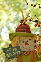 Fall Season Background Scarecrow Autumn Colors Wallpaper Text Ready