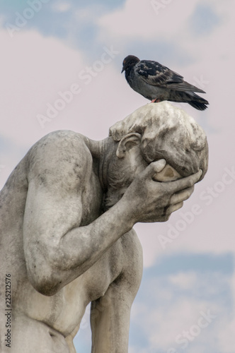 Fotografie, Obraz  Cain with Pigeon