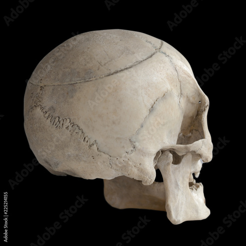 Foto  Human skull isolated on black, close-up