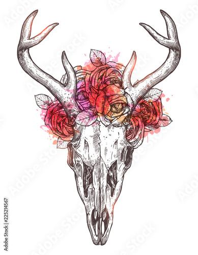 Foto auf AluDibond Aquarell Schädel Sketch Of Deer Skull With Flowers Wreath. Boho Hand Drawn Illustration