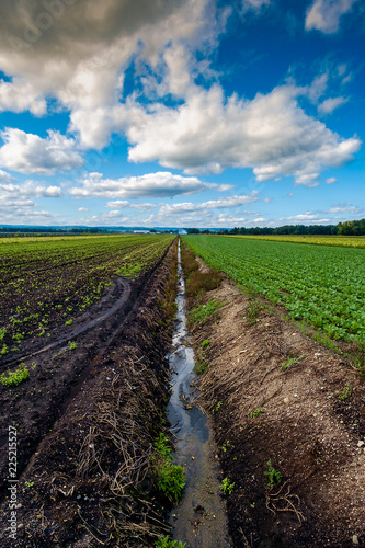 Cloudscape Farm Irrigation Canal