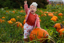 Native American Caucasian Mixed Race Aboriginal Baby At Pumpkin Patch