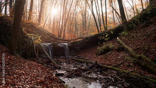 Fotobehang Herfst Mini waterfall in autumn forest at sunrise