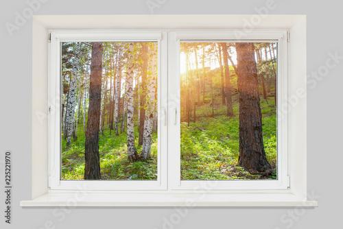 Widok z okna o zachodzie słońca w lesie
