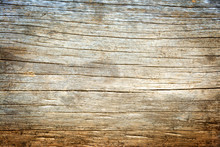 Alter Holzstamm Am Meer