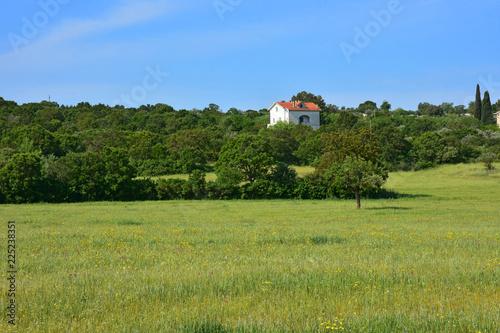 Foto op Plexiglas Pistache Countryside landscape.