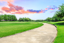 Cement Road And Green Meadow W...