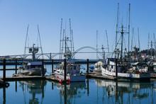 Docked Fishing Boats And Bridge On The Oregon Coast