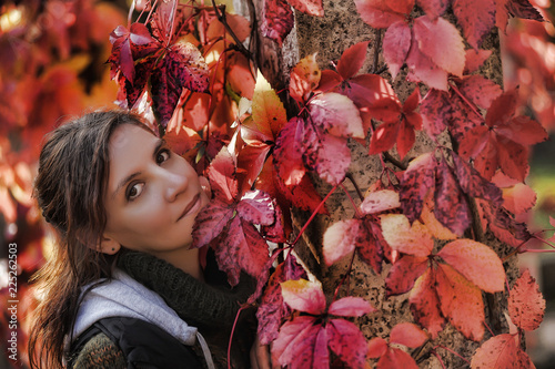 Fotografie, Obraz  beautiful brunette with autumn leaves grape portrait