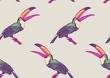 Bezszwowy wzór z ptaka pieprzojadami na białym tle. - 225269593