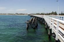 Seagulls On The Skelly Alongside Modern Jetty, Busselton, WA, Australia