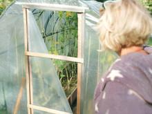 Woman And Damaged Greenhouse