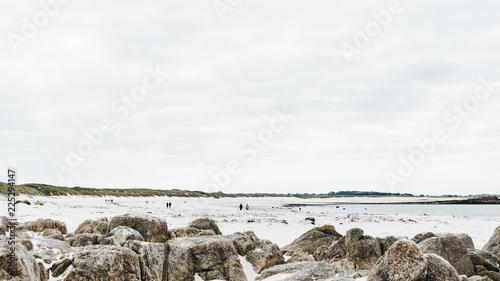 Fototapeta maree basse