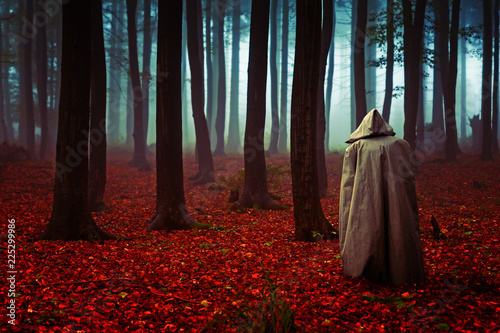 Photo Mönch mit Kutte in einem düsteren Herbstwald