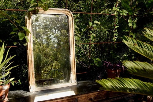 reflet de verdure Fototapet