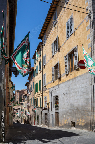 In de dag Havana Palio flags representing a district competing in the famous horse race line a street in Siena, Tuscany