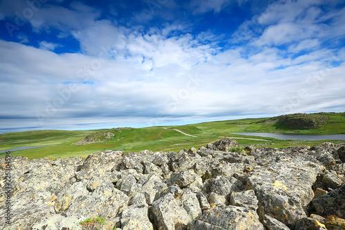 Fotobehang Blauwe hemel landscape tundra / summer landscape in the north tundra, moss, ecosystem
